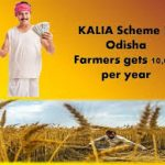 kalia New yojana odisha |16 lakh farmers benefited